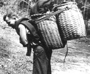 Loaded with packs for Wolf Jaw Camp, late 1940s.