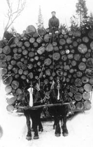 Hauling logs near Old Forge, 1914.