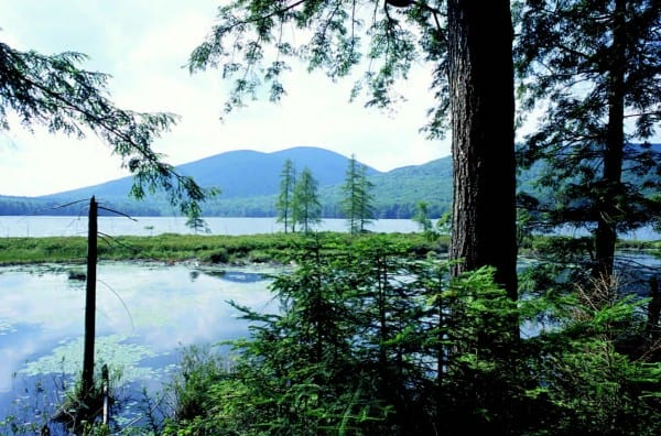 Formerly owned by Finch, Pruyn & Co., Pickwacket Pond is now protected by a conservation easement.