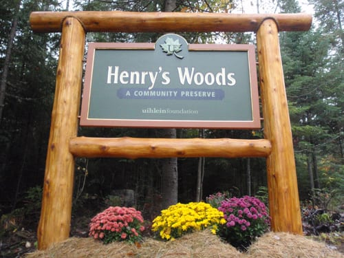 The entrance to Henry's Woods. Photo by Phil Brown.