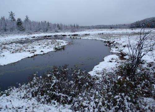 Snow along a stream outside Saranac Lake. Photo by Phil Brown.