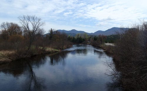 The view of the West Ausable from the put-in off River Road. Photo/Phil Brown.