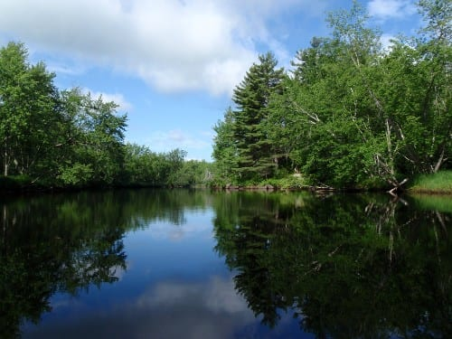 The Raquette River is part of the Northern Forest Canoe Trail. Photo by Phil Brown.