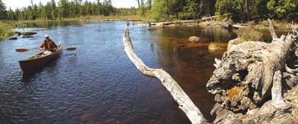 Adirondack Explorer Editor Phil Brown paddles the Beaver River. Photo by Susan Bibeau.