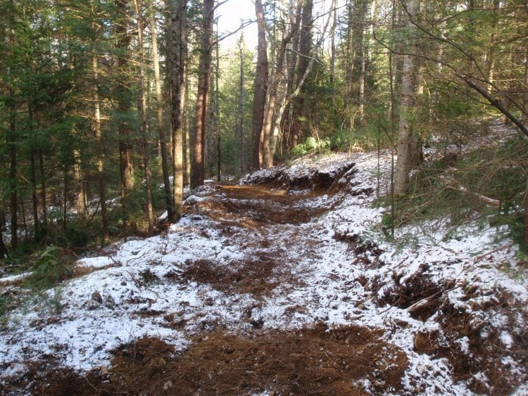 The new section of the Jackrabbit Ski Trail. Photo by Phil Brown.