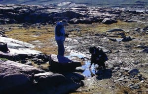 Scientists collect a water sample from a dried-up pond in the Arctic.