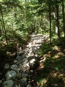 Eroded trail above Marcy Dam. Photo by Phil Brown.
