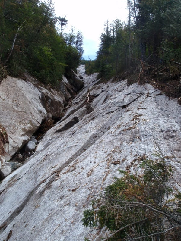 This slide buried part of the Avalanche Pass Trail in mud. Photo by Phil Brown.