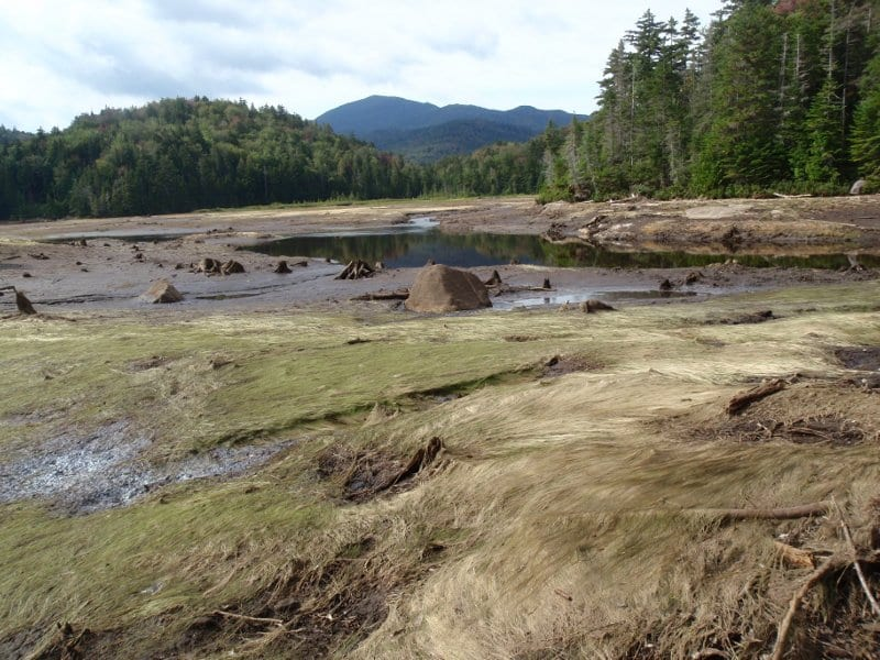 Duck Hole a few days after Irene breached the dam. Photo by Phil Brown.