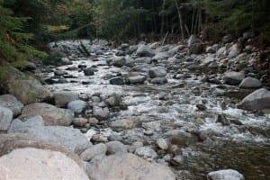 Johns Brook natural