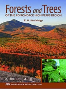 Forests and Trees of the Adirondack High Peaks Region By E.H. Ketchledge Adirondack Mountain Club, Third Edition, 2011 Softcover, 176 pages, $9.95