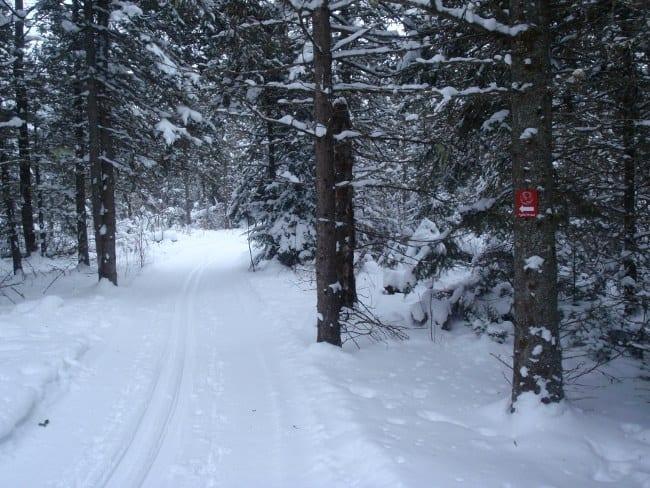 Jackrabbit Ski Trail in Lake Placid