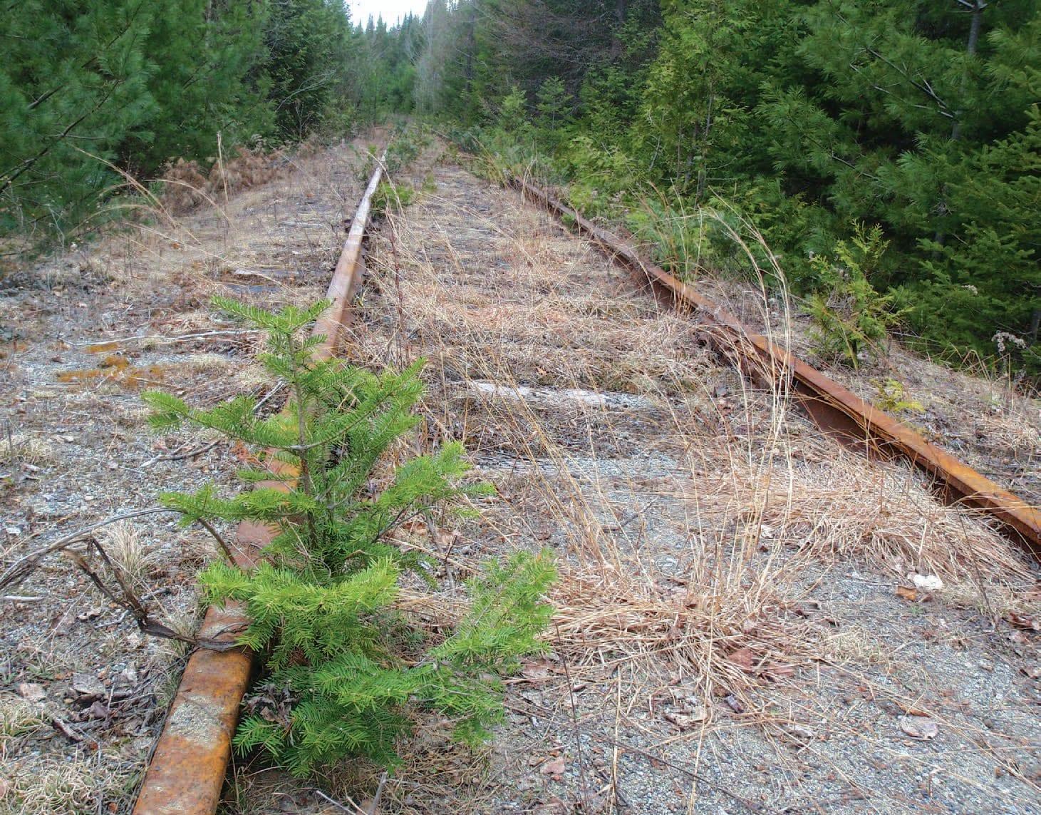 Tahawus rail in the Adirondacks