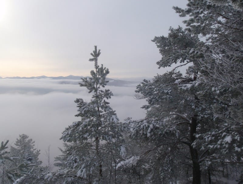 View from the summit of Baker Mountain. Photo by Phil Brown.