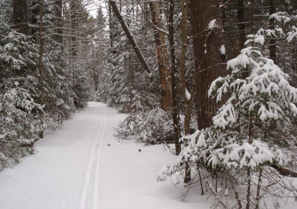The Jackrabbit Ski Trail on the way to McKenzie Pond. Photo by Phil Brown.