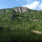 DEC temporarily closes cliffs to protect falcons