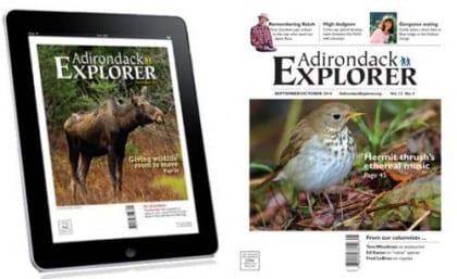 Combined-digital-and-print-subscription_medium