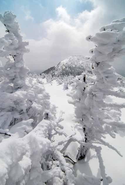 Overexposure improves snow scenes.