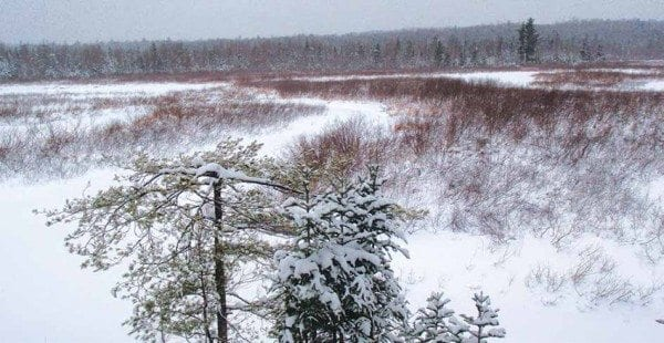 The frozen Oswegatchie River as seen from High Rock. Photo by Phil Brown