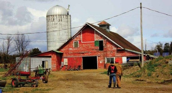 Mace Chasm Farm in Keeseville is one of several new farms in the Champlain Valley. Photo by Emily Schmitt