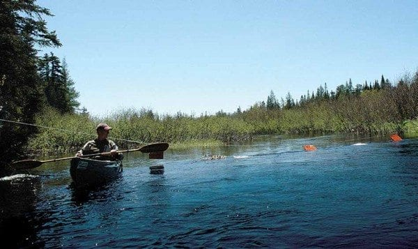 Phil Brown paddles near a cable on Shingle Shanty Brook in May 2009. Photo by Susan Bibeau