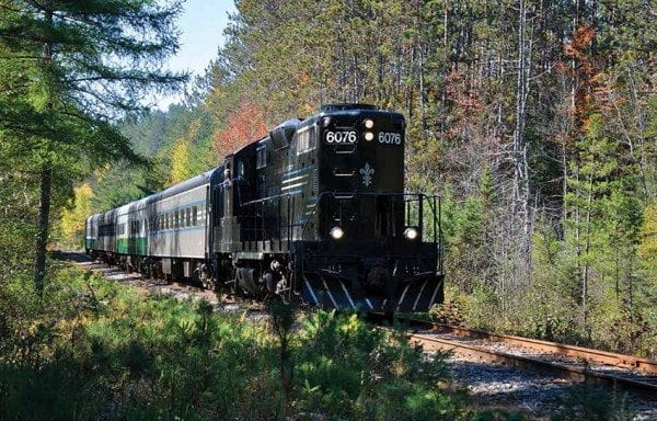 The tourist train passes through forest between Lake Placid and Saranac Lake. Photo by Susan Bibeau