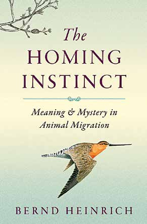 The Homing Instinct Meaning and Mystery in Animal Migration By Bernd Heinrich Houghton Mifflin Harcourt, 2014 Hardcover, 384 pages, $27