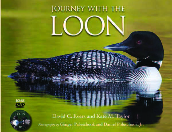 Journey with the Loon By David C. Evers and Kate M. Taylor Photography by Ginger Poleschook and Daniel Poleschook Jr. Willow Creek Press Hardcover, 144 pages (DVD included), $27.95