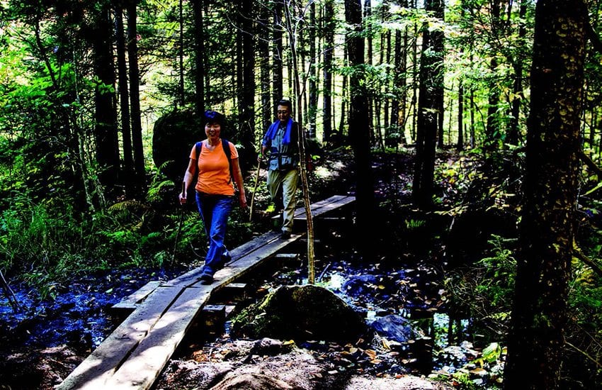 On their way to the falls, two hikers cross soggy ground on a boardwalk. Photo by Nancie Battaglia