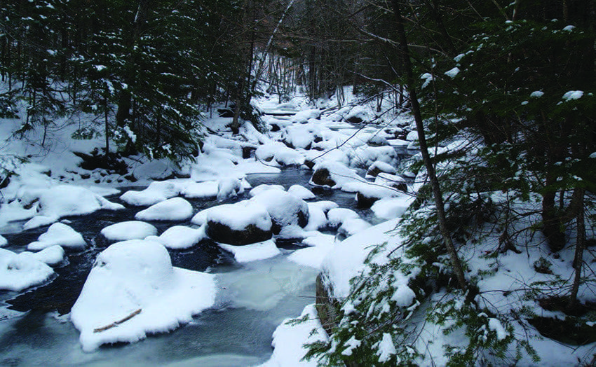 For much of the way, the road parallels a tributary of Santanoni Brook. Photo by Phil Brown