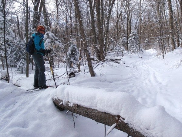 Carol Fox skis over a fallen tree on the Pine Pond Trail. (Photo by Phil Brown)
