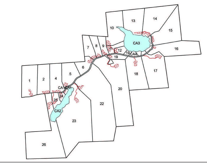 The map shows the lots, the access road, and (in red) driveways and building sites. Courtesy of APA