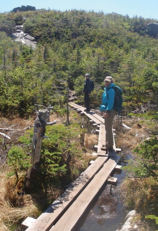 New boardwalks on the way to Boundary Peak keep hikers out of the muck. Photo by Phil Brown