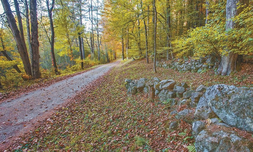 Wardsboro Road passes through woods where a community of farms once thrived. Photo by Carl Heilman II