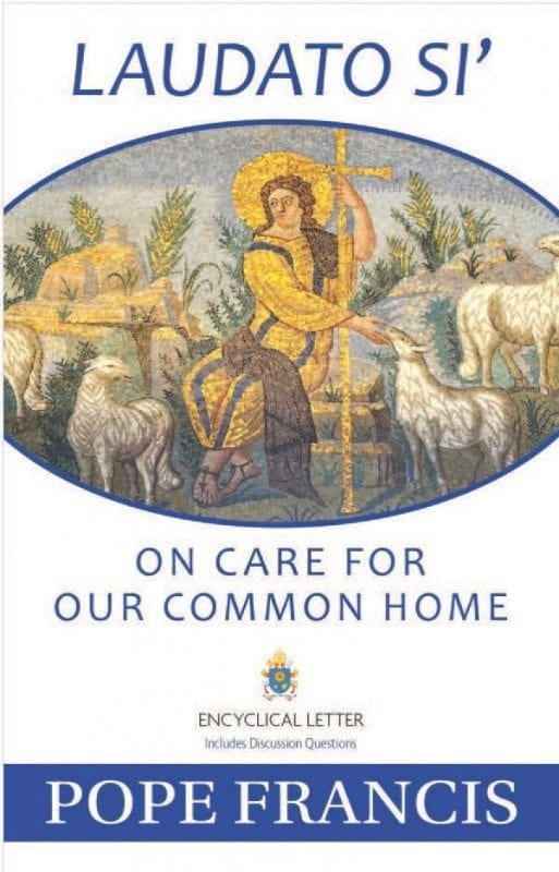 "Laudato Si': On Care for Our Common Home can be purchased in stores and online. Amazon is selling a paperback edition for $8.47. It also can be downloaded for free at laudatosi.com. The title comes from the Canticle of the Sun by Saint Francis of Assisi, in which the phrase Laudato si', mi Signore appears several times. The English version of the pope's encyclical letter translates the phrase as ""Praise be to you, my Lord."""