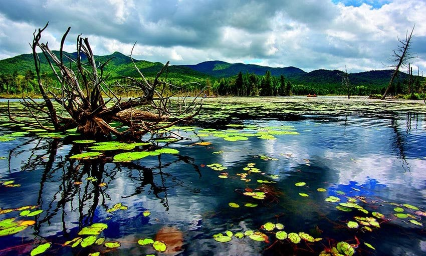 Recently acquired by the state, Boreas Ponds has sparked a classic Adirondack debate over how to balance public access and wilderness protection. PHOTO BY CARL HEILMAN II