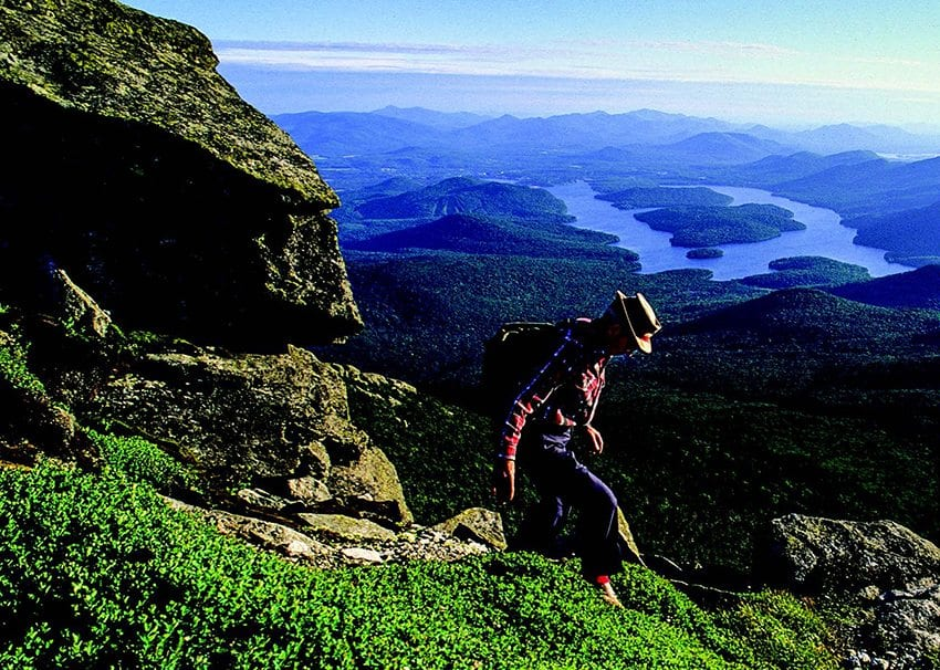 Ed Ketchledge studies the alpine vegetation on Whiteface Mountain. PHOTO BY NANCIE BATTAGLIA