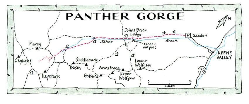 Panther Gorge NANCYBERNSTEINILLUSTRATION.COM