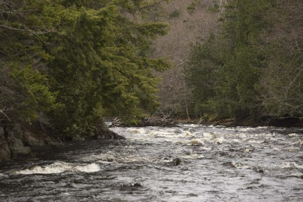 High water on the Saranac River this past April after snowmelt and heavy rains.