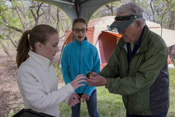 A young girl gets an up-close look at a bird at the Crown Point Birding Station.