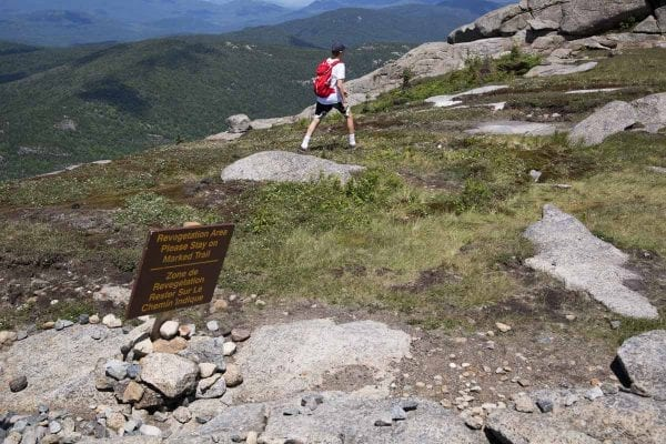 A sign placed by summit stewards warns hikers to stay off the vegetation. This hiker apparently didn't notice the sign.