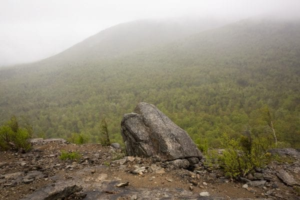 Scenes from a hike up the Cobble Lookout trail in Wilmington