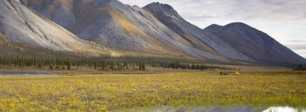 Arctic refuge