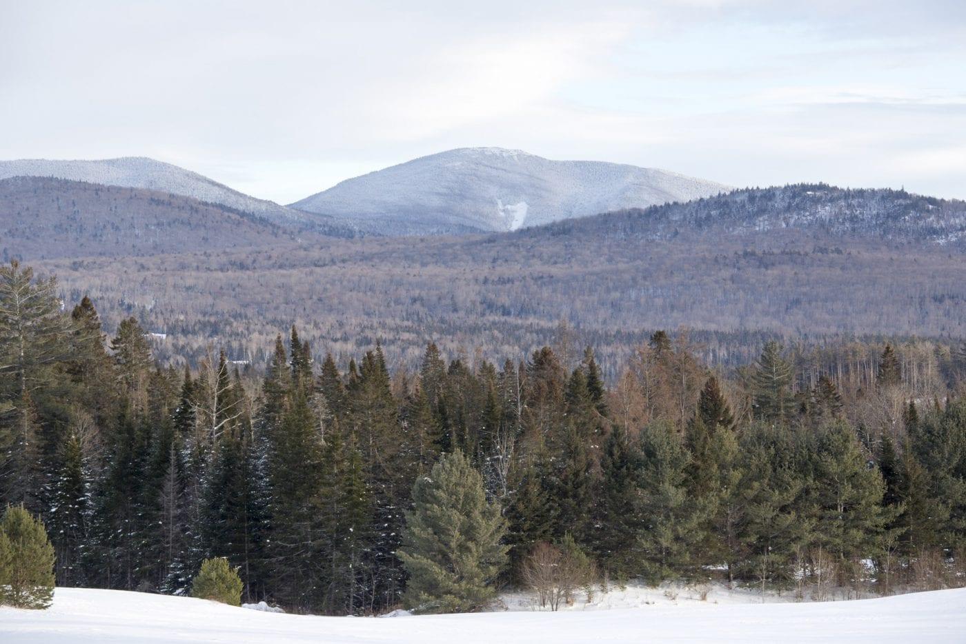 Snowy-Peaks-Adirondacks-Mike-Lynch-19