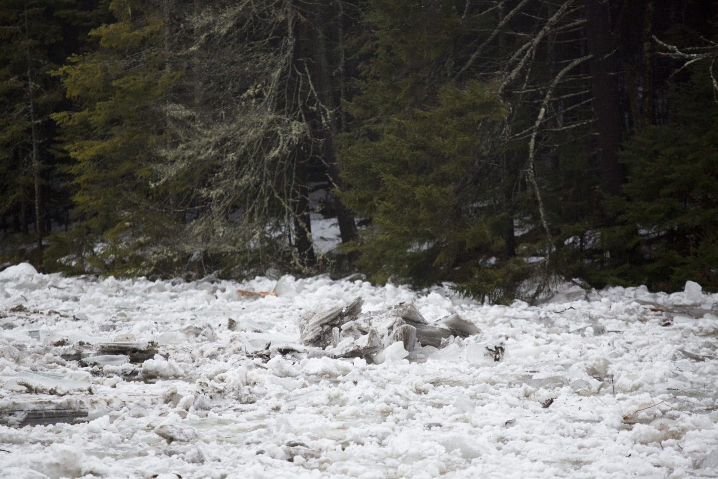 Ausable River Ice Jam
