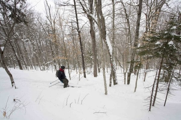 A skip trip to Goodman Mountain near Tupper Lake after several feet of snow had fallen. The deep snow made it possible to ski this hiking trail that is part of the Tupper Lake Triad. Photo by Phil Brown