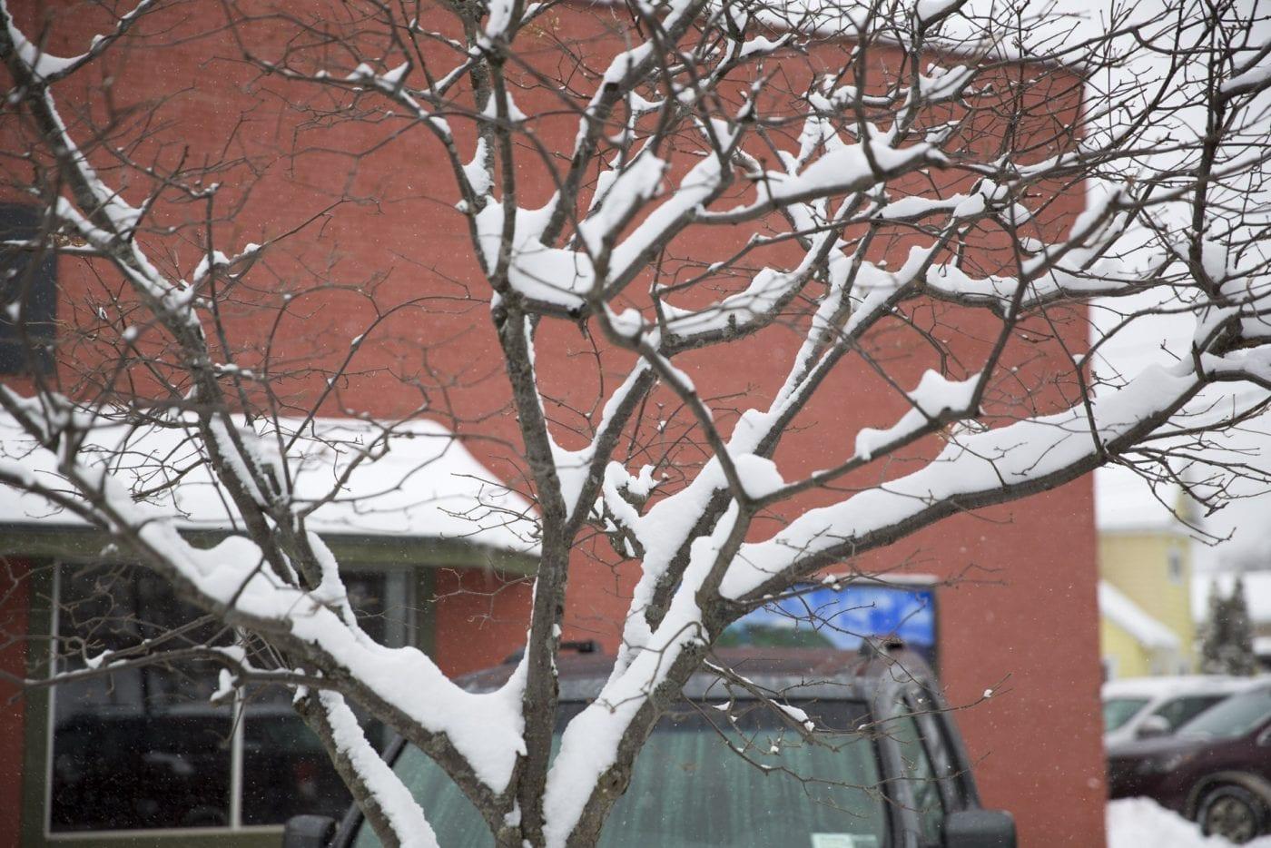 Snowy Saranac