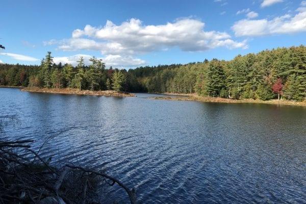 Tub Mill Pond
