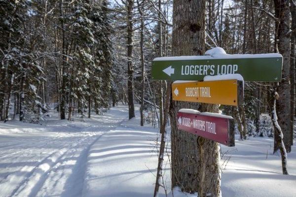 Paul Smith's College VIC ski trails