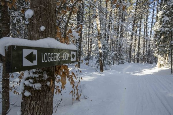 Loggers Loop is slated for upgrades. Photo by Mike Lynch